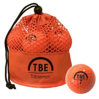 ゴルフボール 公認球 2ピース 1ダース(12個入り) メッシュバック入り(その他)