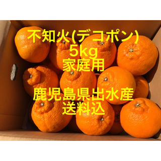 鹿児島県出水産 不知火 デコポン 家庭用 5kg 送料込