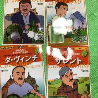 ★送料込★イタリア野菜の種4種類(野菜)