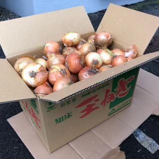 こちらも人気!北海道知床産玉ねぎ 10キロ 送料無料