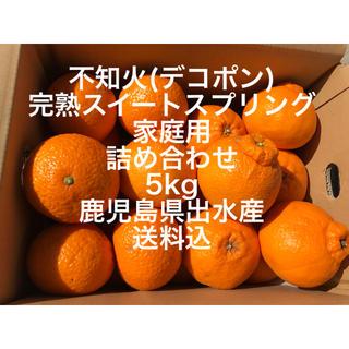 鹿児島県出水産 不知火 デコポン スイートスプリング 詰め合わせ 5kg 家庭用