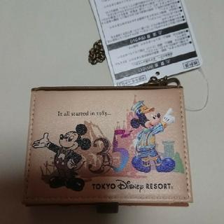 ディズニー(Disney)のディズニーリゾート 35周年 パスケース(パスケース/IDカードホルダー)