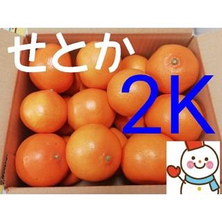 ②柑橘の大トロ❗せとか小箱♥️雪だるまから