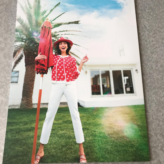 M'S GRACY(エムズグレイシー)のエムズグレイシー  カタログ エンタメ/ホビーの雑誌(ファッション)の商品写真