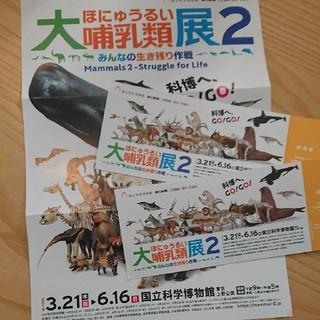 大哺乳類展2 チケット2枚(美術館/博物館)