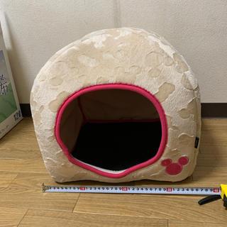 ディズニー(Disney)の小型犬ドーム型ベッド(おもちゃ/ペット小物)