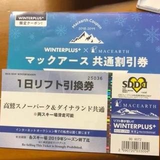 高鷲スノーパーク ダイナランド リフト券+共通割引き券(ウィンタースポーツ)
