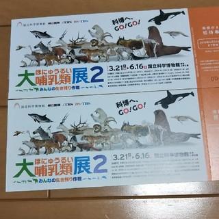 『大哺乳類展2』 期限付きチケット2枚(美術館/博物館)