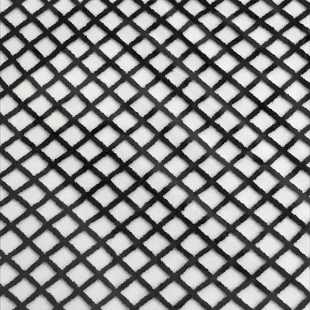 GU(ジーユー)のジーユー 網タイツ 黒 2足 レディースのレッグウェア(タイツ/ストッキング)の商品写真