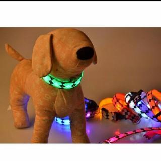 光る首輪 LED 犬(リード/首輪)