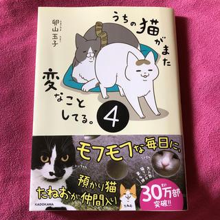 カドカワショテン(角川書店)のうちの猫がまた変なことしてる。4(その他)