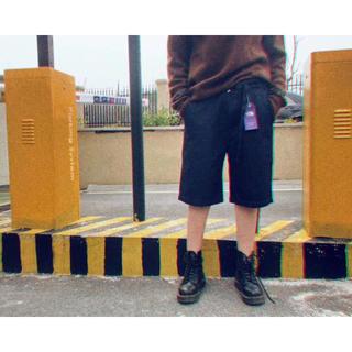 ザノースフェイス(THE NORTH FACE)の18SS THE NORTH FACE紫の標識のデニムのショート・パンツ(ペインターパンツ)