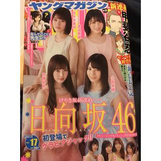 コウダンシャ(講談社)のヤングマガジン  17号(漫画雑誌)
