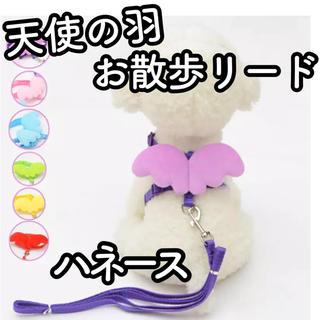 【新品】犬 猫 うさぎ ハーネス リード 散歩 天使 羽 翼 エンジェル