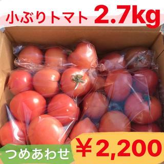 お得!トマト2.7キロ☆岐阜県産麗容