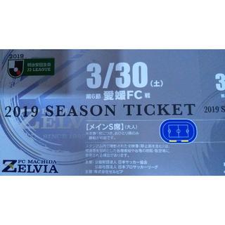 メインS席 町田ゼルビアvs愛媛FC(サッカー)