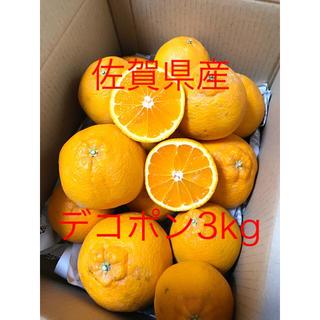 佐賀県太良産デコポン3kg