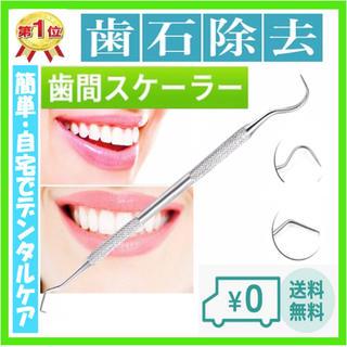☆ラクマ☆歯石取り 丈夫なステンレス製 No.42(口臭防止/エチケット用品)