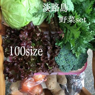 淡路島【 きまぐれ 】100 野菜set
