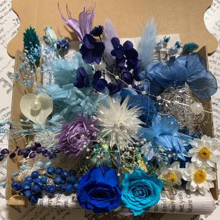 【期間限定花かんざし入り】ハーバリウム花材ブルーアソートNo.227(プリザーブドフラワー)