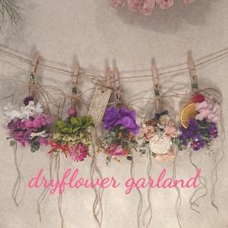 232 dryflower garland ドライフラワーガーランド(ドライフラワー)