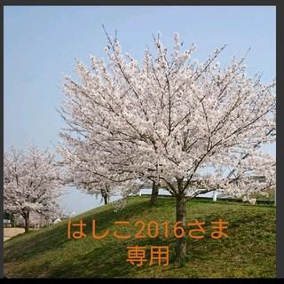 エムティー(mt)の2019 三井アウトレットパーク倉敷 限定マステ(テープ/マスキングテープ)