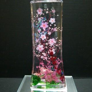 ハーバリウム  桜満開バージョン(プリザーブドフラワー)