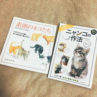 ◆ 即購入OK ( 猫 雑誌 )(その他)