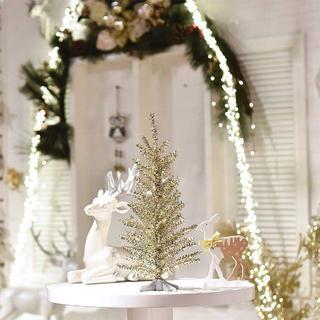 卓上☆ミニクリスマスツリー(その他)