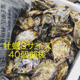 加熱用殻付き牡蠣Sサイズ(魚介)