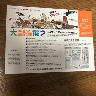大哺乳類展2チケット2枚(美術館/博物館)