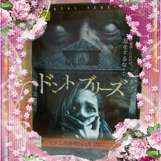 洋画DVD        【ドントブリーズ】(外国映画)