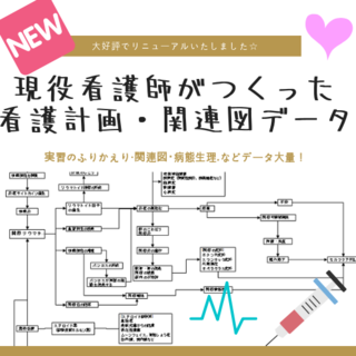 看護計画 関連図 看護記録 アセスメント 看護実習(健康/医学)
