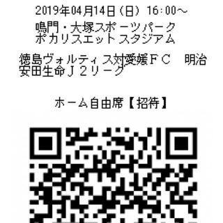 4/14 徳島ヴォルティス対愛媛FC チケット 1枚(サッカー)