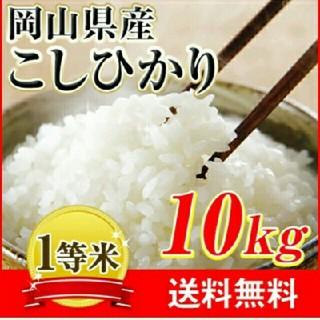 こしひかり10kg(米/穀物)