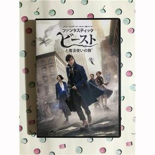 ファンタスティックビーストと魔法使いの旅 DVD(外国映画)