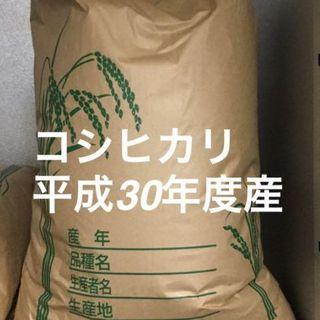 米 コシヒカリ 高知県産30kg(米/穀物)