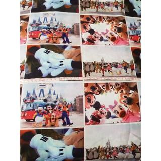 ディズニー(Disney)のディズニー 実写 生地 6(生地/糸)