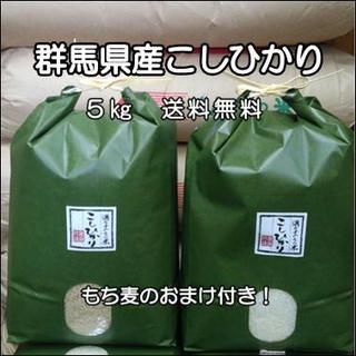 群馬県みなかみ産 コシヒカリ  5㎏ もち麦つき!(米/穀物)