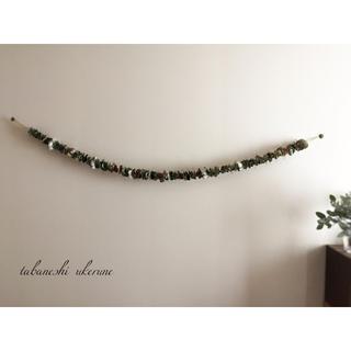ポポラスと実物たちと綿花のアンティーク ガーランド 約180cm ドライフラワー(ドライフラワー)
