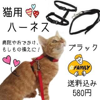 【新品】猫ちゃん用ハーネス☆リードセット☆ブラック(猫)