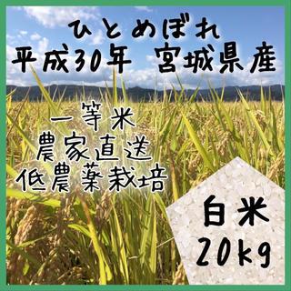 即購入OK♪【農家直送】新米 宮城県産ひとめぼれ 白米 20kg【送料無料】