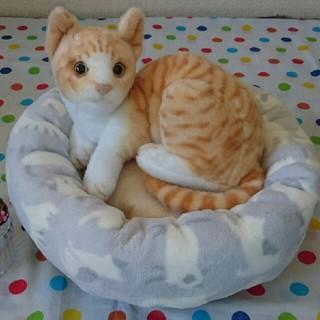 丸型猫クッション♪(猫)