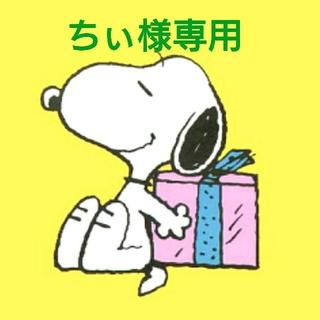スヌーピー(SNOOPY)のちぃ様専用ページ(その他)