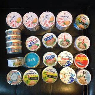 シーチキンやまぐろフレーク合計31缶セット(缶詰/瓶詰)