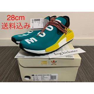 アディダス(adidas)のAdidas PW NMD TR Human Race Sun Glow(スニーカー)