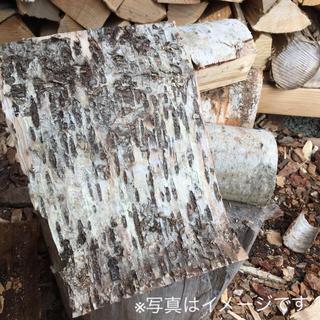 白樺 シラカバ 皮 樹皮 焚き付け 着火材 北海道産 天然 約A4サイズ(ストーブ/コンロ)