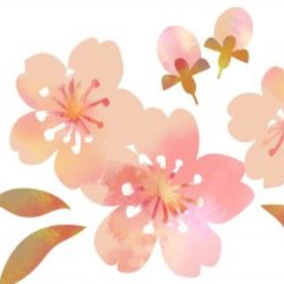 mikihouse - テーマパーク半袖Tシャッ 白 120㎝