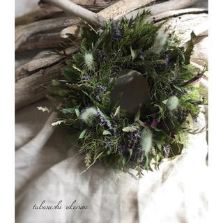 若草色のラグラスとヘデラベリーふんわりとした春色 シックなリース ドライフラワー(ドライフラワー)