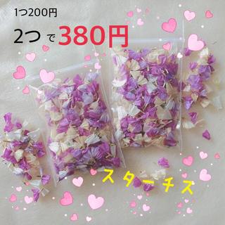 スターチス 2つ 380円(ドライフラワー)